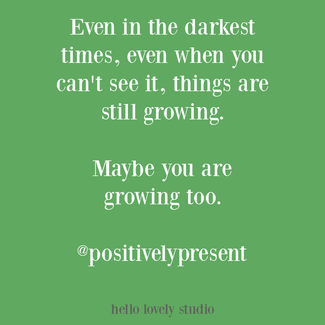 Inspirational quote about growing in the dark on Hello Lovely Studio via positivelypresent. #growingquotes #strugglequotes #encouragementquotes