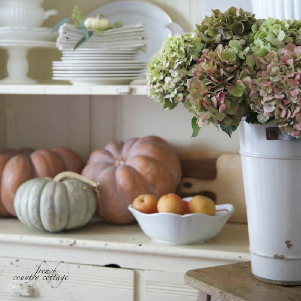 Pastel pumpkins, rosy hydrangea in a tin vase, and French country fall beauty- French Country Cottage. Serene French Farmhouse Fall Decor Photos ahead! #frenchcountry #falldecor #pumpkins #countrykitchen #interiordesign #pumpkins