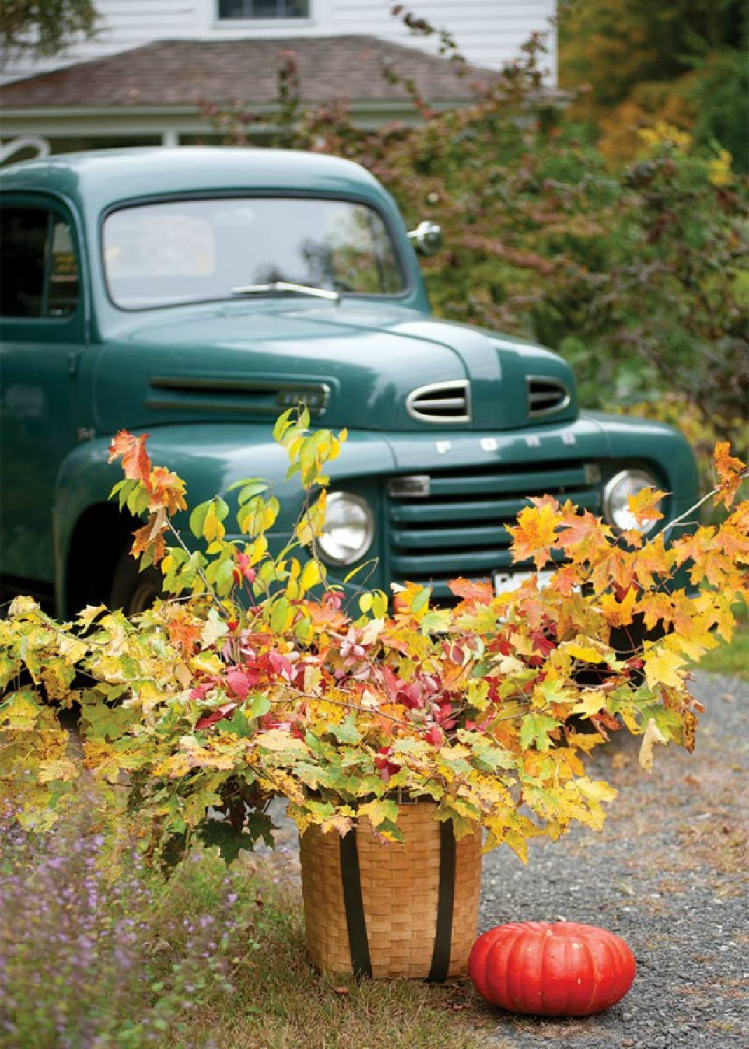 Green vintage green pickup truck and gorgeous golden leafy branches in a basket with pumpkin - fall splendor from The Cottage Journal. #pickup #vintagestyle #fallinspiration #fallcolor