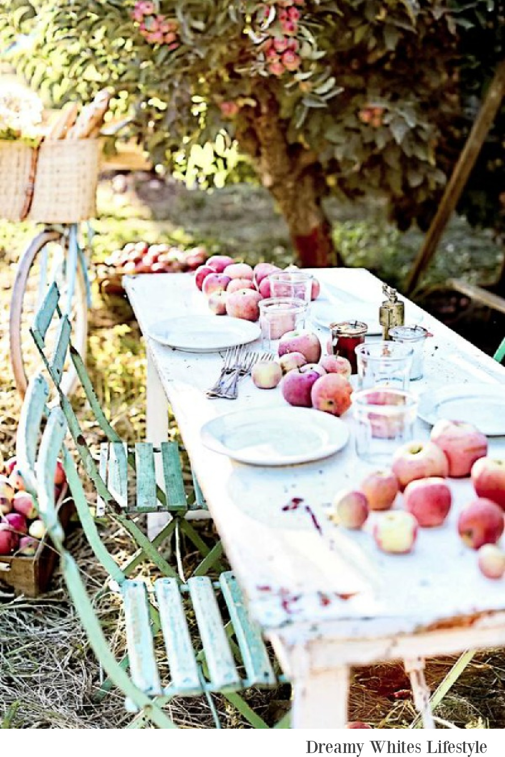 French farmhouse fall bliss in this outdoor dining vignette with farm table and bistro chairs - Dreamy Whites Atelier. Serene French Farmhouse Fall Decor Photos ahead!  #frenchfarmhouse #fallinspiration #apples #harvest #farmtable