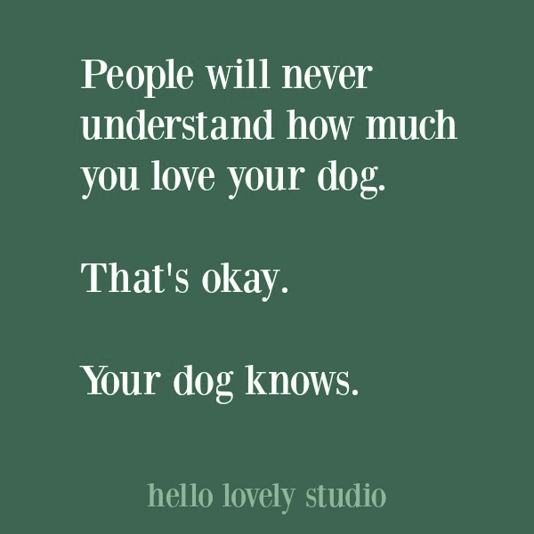 Dog quotes on Hello Lovely Studio. #quotes #dogquotes #petquotes