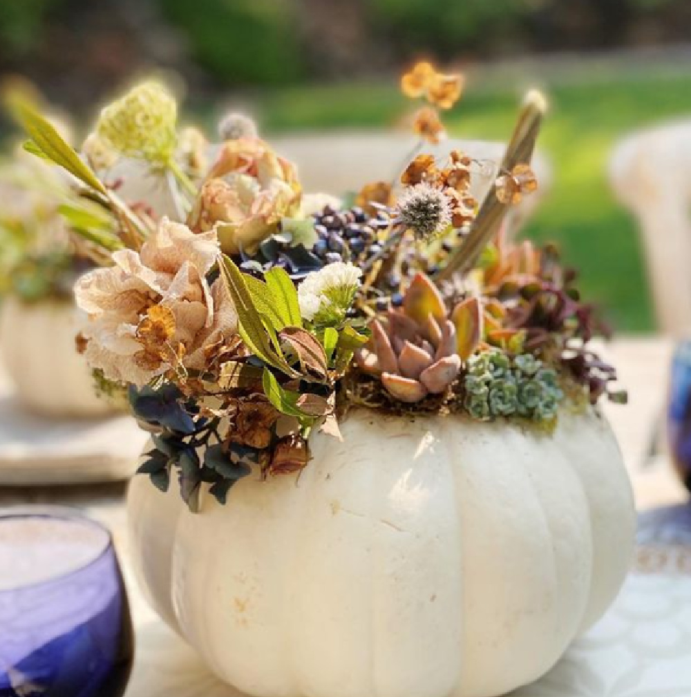 Fall succulent and floral centerpiece in a white pumpkin - The Flower Theory. #centerpieces #fallfloral