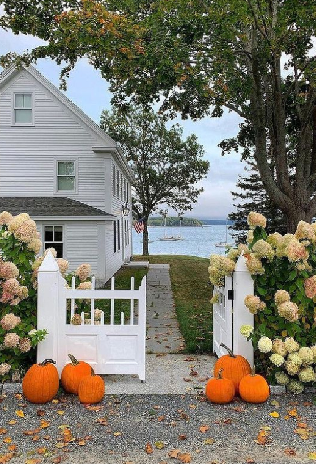 Maine historic seaside home in fall with pumpkins and limelight hydrangea - @loithai of Tone on Tone. #mainehomes #limelighthydrangea #houseexteriors