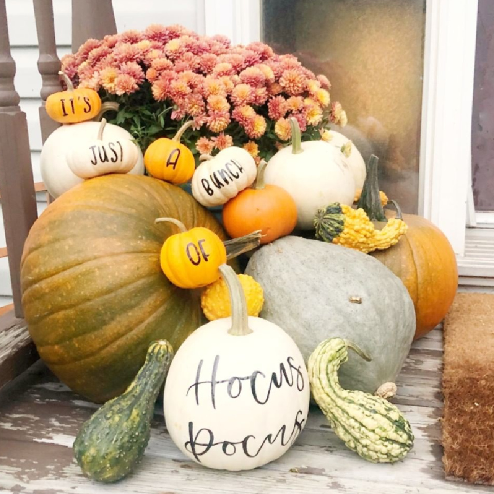 """Fall front porch display with painted pumpkins reading """"It's just a bunch of hocus pocus"""" @blushandfaire #paintedpumpkins #fallporch"""