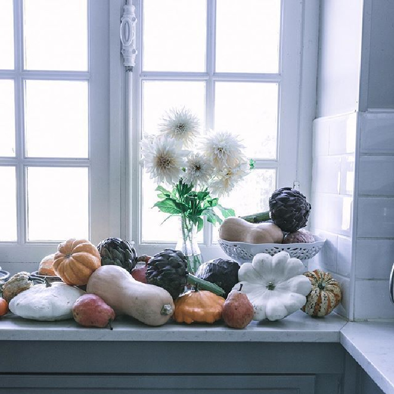Serene French country autumn beauty in a chateau windowsill with pumpkins, gourds and fall bounty - @chateaumontfort. #fallbeauty #frenchcountry #gourds #pumpkins #serenefall #frenchkitchen #autumnvibes