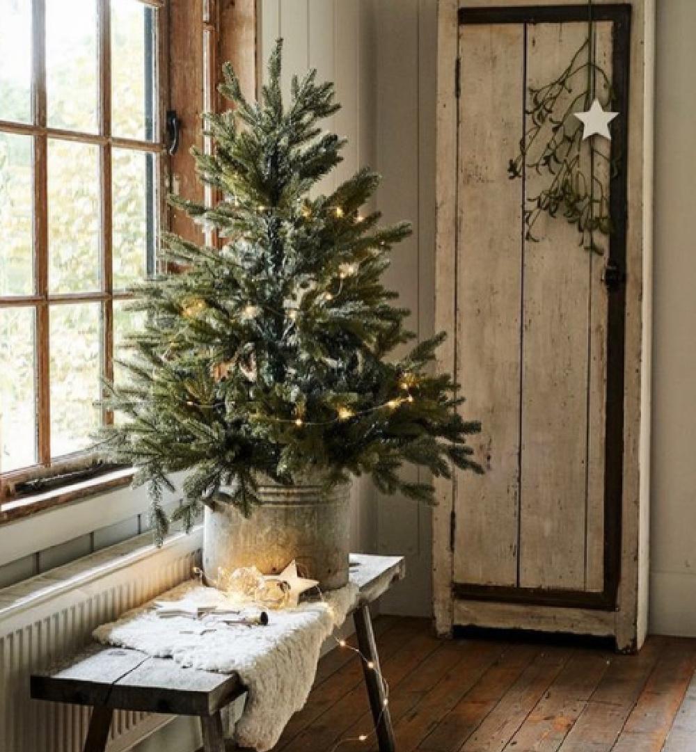 Scandinavian Christmas decor with fresh tree in galvanized bucket with weathered cupboard - Whisper of Vintage. #swedishchristmas #scandichristmas #holidaydecor