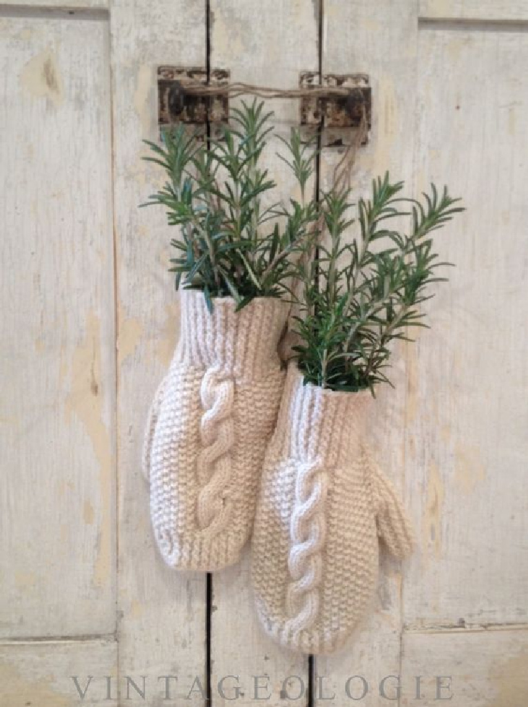 Charming Scandi Christmas decor with white knit mittens filled with rosemary sprigs and hanging on a rustic white wood farm cabinet - Vintageologie.