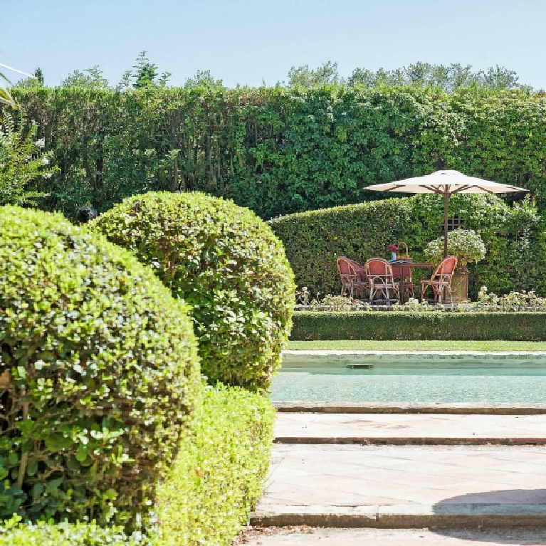 Huge boxwood spheres at a pool in Provence. #boxwood #frenchchateau #frenchgarden