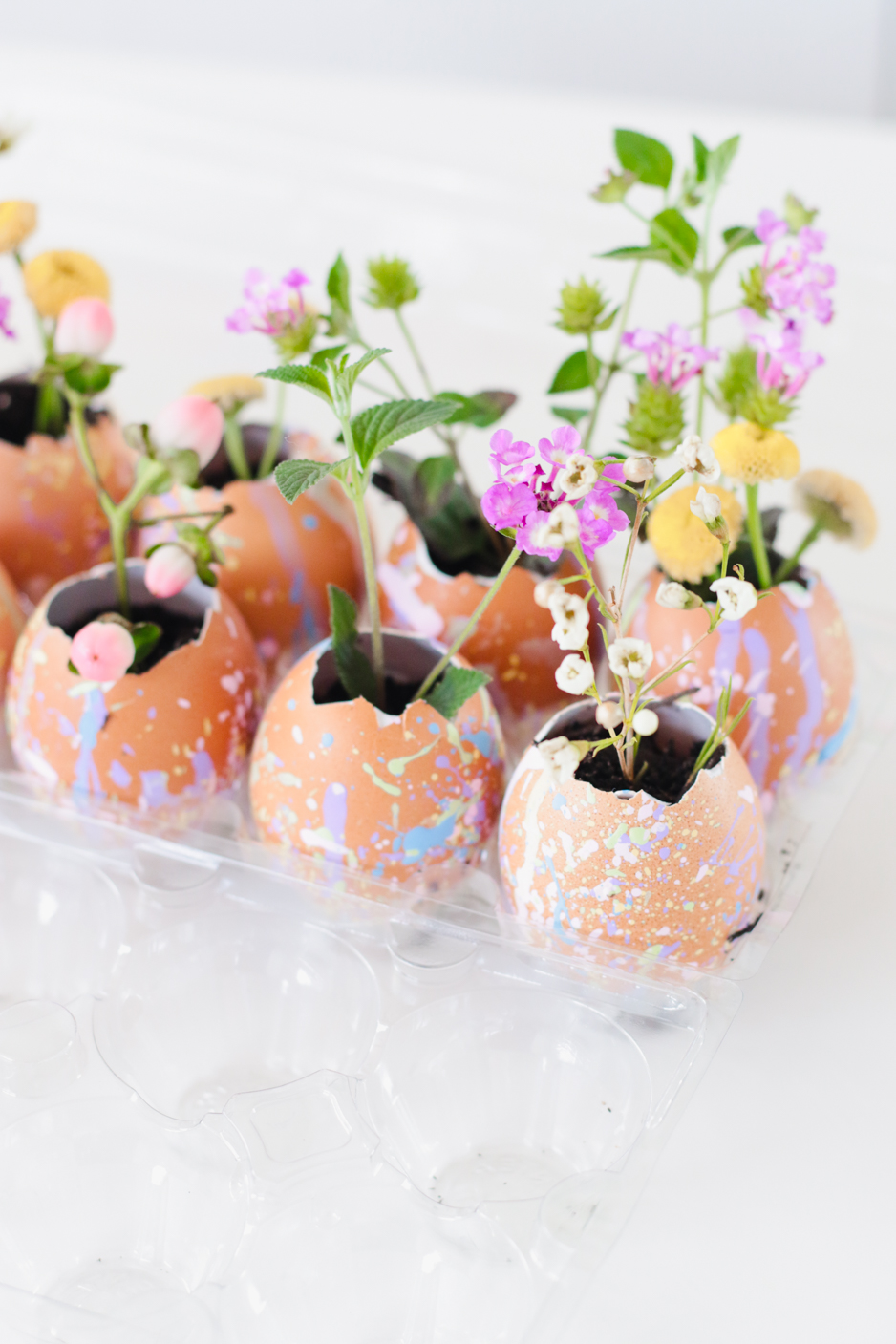 Adorable pastel paint splattered egg shells planted with spring flowers makes a perfect activity for children or adults and parties ushering in the hope of SPRING! Twinkle Twinkle Little Party. #springcrafts #springparties #eggshells #springdiy