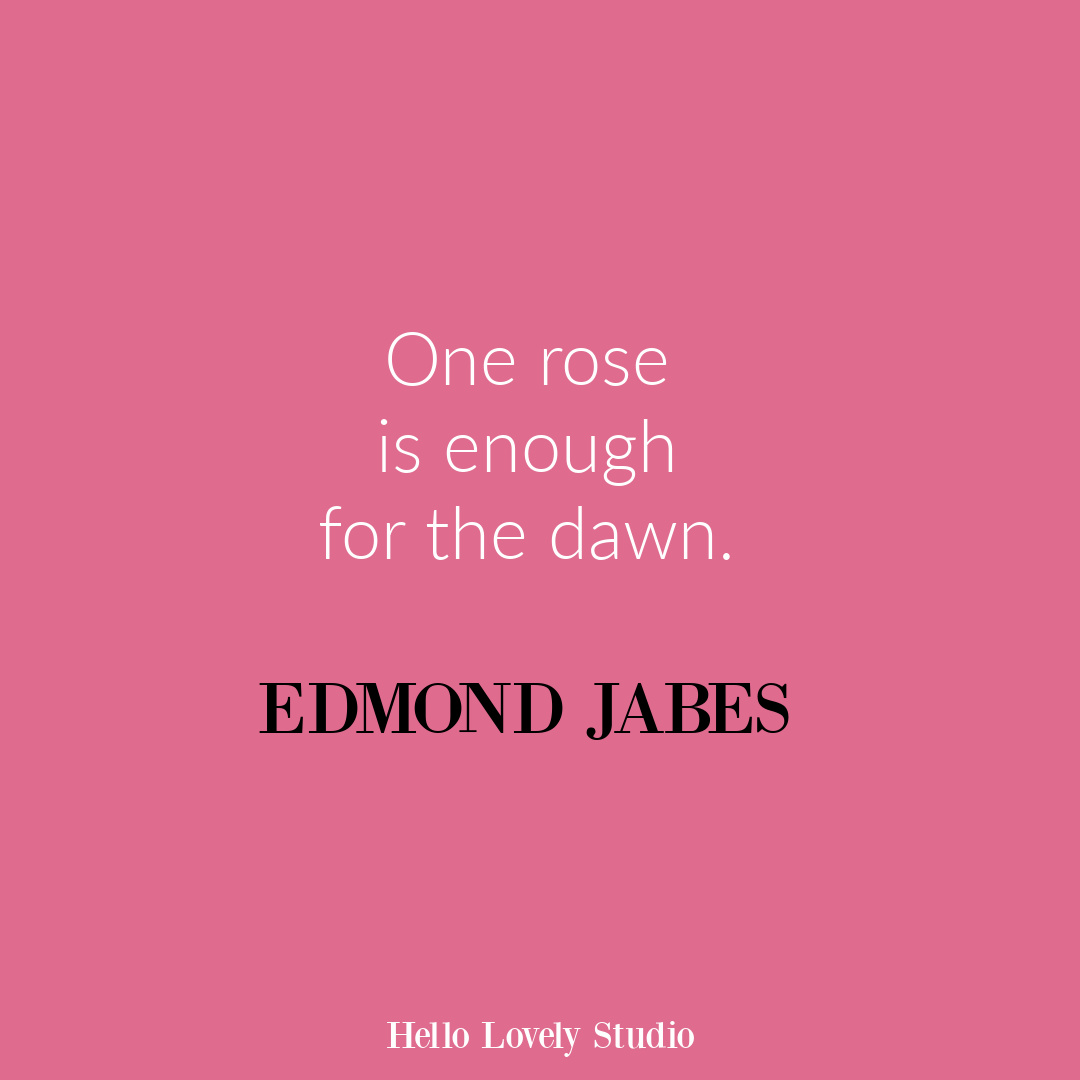 Inspirational flower quote about blooming and life on Hello Lovely Studio. #flowerquote #inspirationalquotes #roses