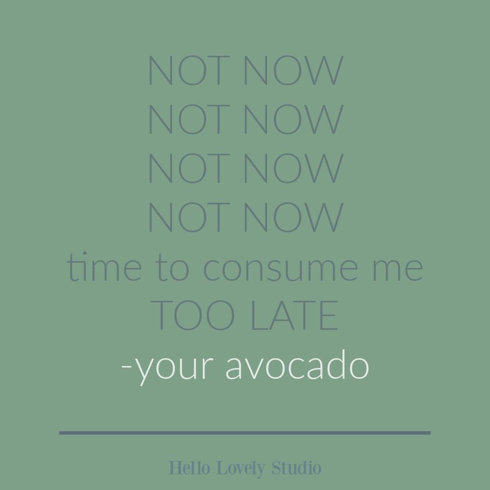 Avocado quote - funny humor quote on Hello Lovely. #avocado #quotes #foodhumor