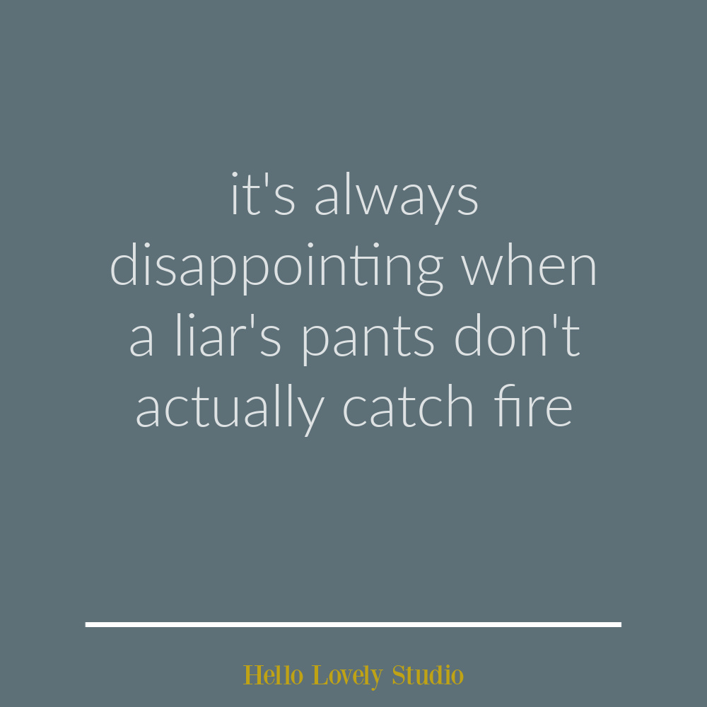 Funny quote about lying on Hello Lovely Studio. #funnyquotes #humorquotes #sarcasm