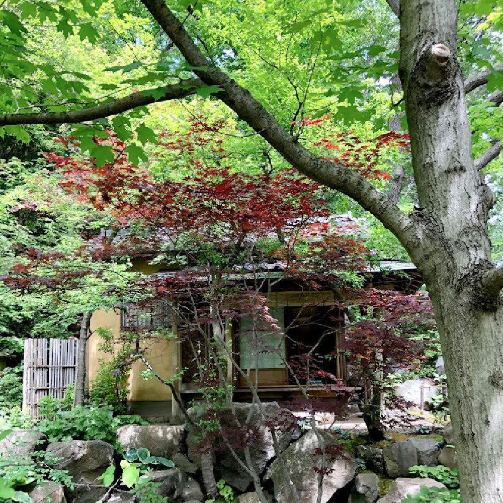 Tea house and Lovely early June colors in a Japanese garden - Hello Lovely Studio.