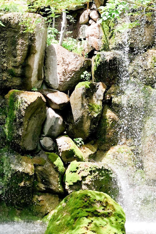Waterfall in a Japanese garden - Hello Lovely Studio.