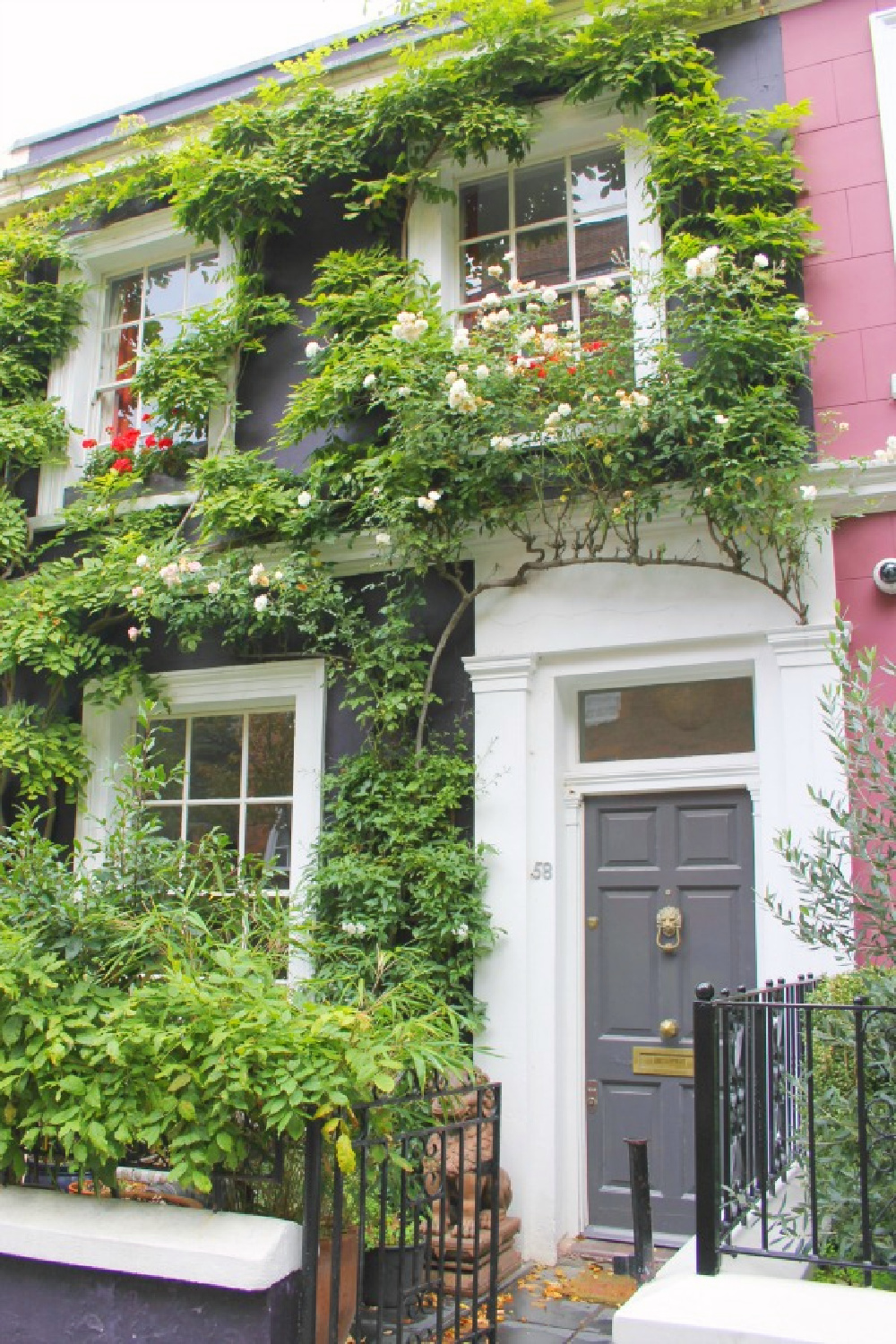 Climbing vines and blooms on a London pink house exterior with grey front door - photo by Hello Lovely Studio.