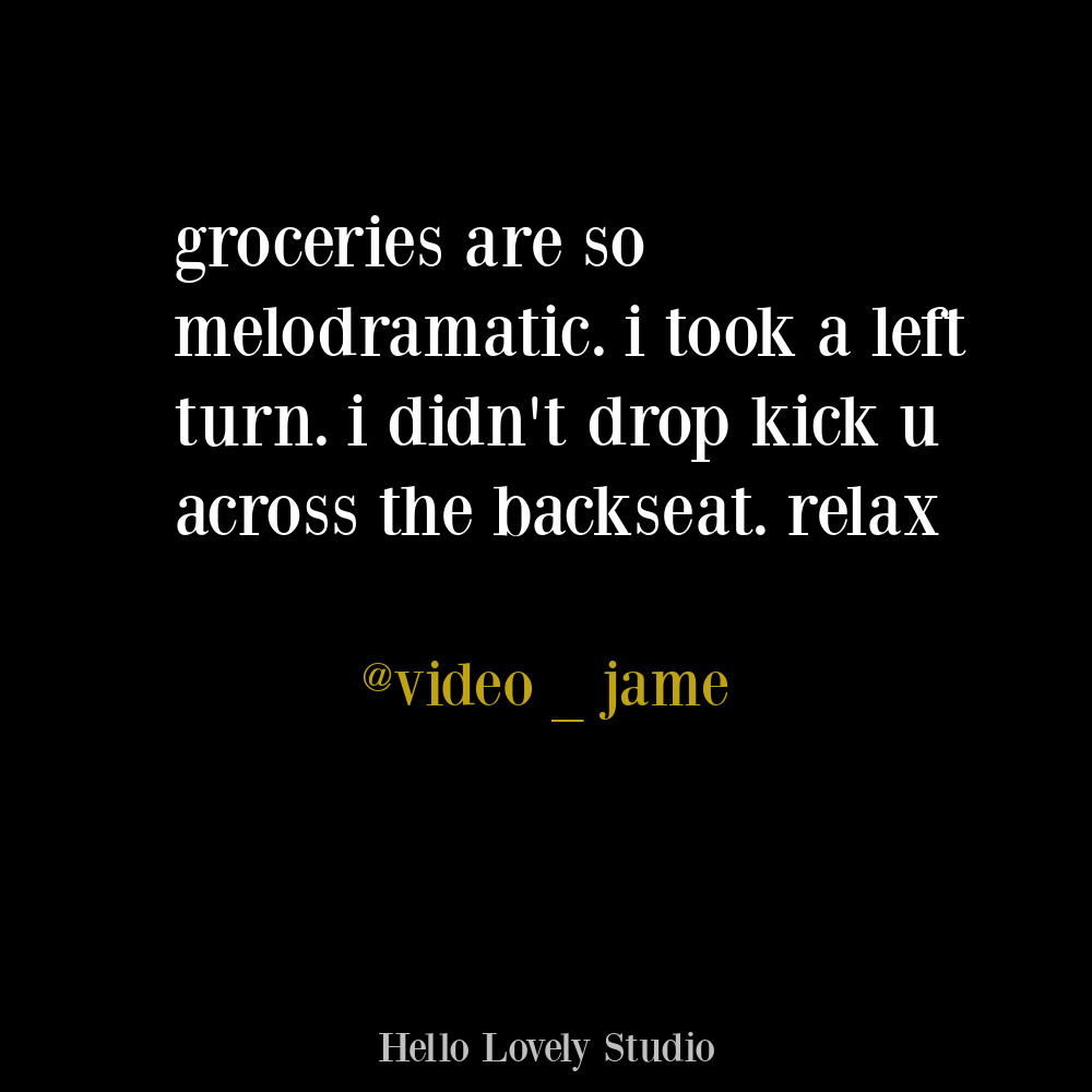One off humor and funny tweet about groceries on Hello Lovely. #funnyquotes #groceries