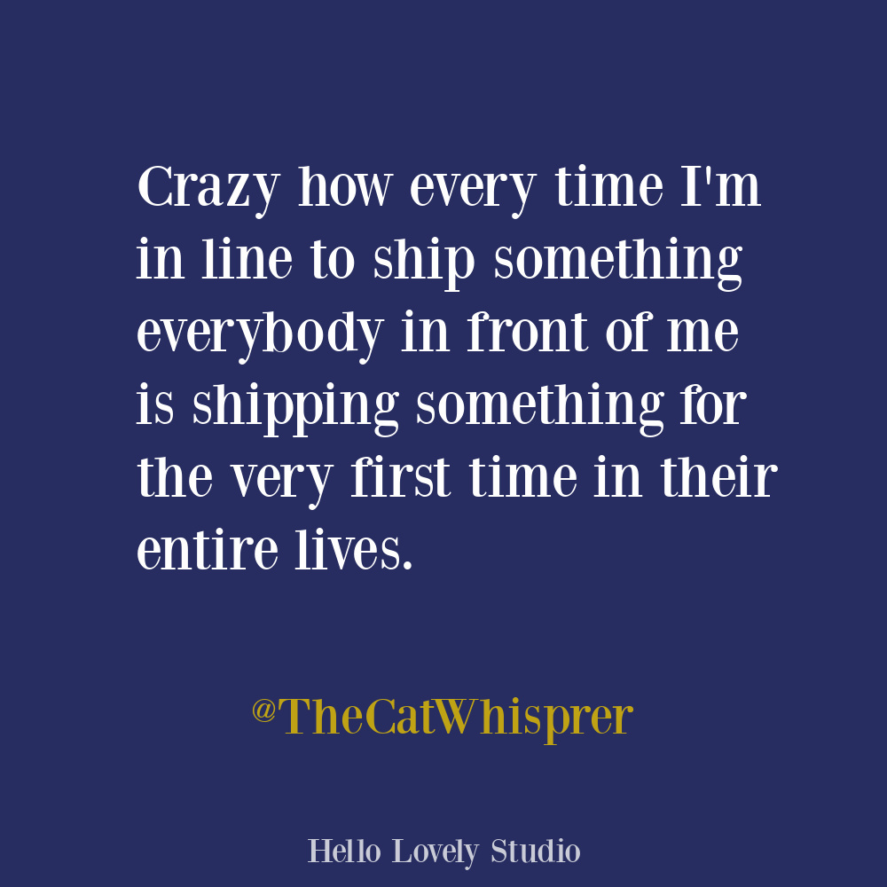 Sarcastic humor funny tweet about waiting in line on Hello Lovely. #funnytweets #humorquotes #waitingquotes